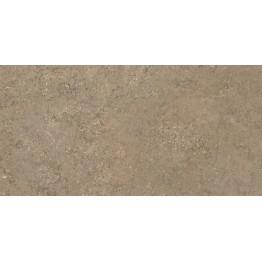 ΠΛΑΚΑΚΙ ΤΟΙΧΟΥ ABSOLUTE NUEZ 31,6x63,2cm
